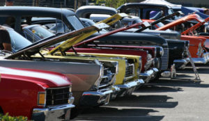 Car show front end line ready to be ballot counted.